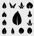 leaf icons set vector image vector image