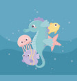 seahorse jellyfish fishes starfish bubbles life vector image