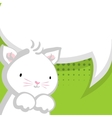 White cute little kitty green backdrop vector image vector image