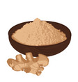 ginger root and ginger powder vector image vector image