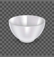 realistic detailed 3d ceramic bowl on a vector image vector image
