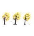 set of old trees in autumn windy weather vector image