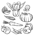 vegetables outline Hand drawn tomato and garlic vector image vector image