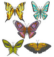 set of colorful hand-drawn butterflies vector image