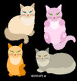 four cartoon cute fluffy cats on black background vector image vector image