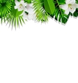 Frame branch tropical leaves and white flowers vector image vector image