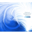 Macro feathers White blue vector image vector image