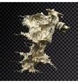 splash gold 3d transparent vector image