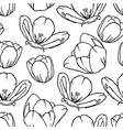 tulip contour pattern vector image vector image