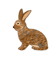 A sideview of a rabbit on a white background vector image vector image