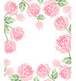 background with pink roses vector image vector image