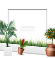 Beautiful home plants colorful template
