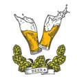 beer sphc vector image vector image