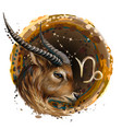 capricorn is a sign zodiac vector image
