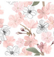 floral seamless pattern cherry or sakura flowers vector image vector image