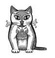 head of cat vector image