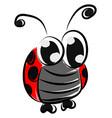 ladybug with huge eyes on white background vector image vector image