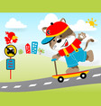 playing scooter in the road with little animals vector image vector image
