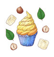 set of banana nuts cupcake hand drawing vector image
