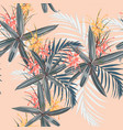 tropical leaves and paradise protea flowers vector image vector image