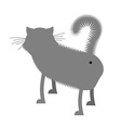 Ass cat Pet stands back funny gray cat with tail vector image vector image