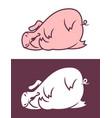 cute sleeping pig character vector image