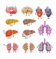healthy and thick organs with faces and limbs vector image