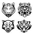 set heads of wild animals vector image