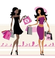 Women shopping bags vector image