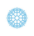 snowflake isolated blue snow on white background vector image
