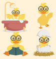 cute baby duck collection set vector image