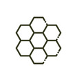 honeycomb structure bee nature line design vector image vector image