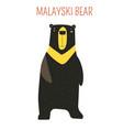 malayski bear childish cartoon book character vector image vector image