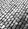 old brick walkway vector image