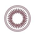 kiwi slice fruit line vector image