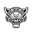 A tiger head