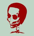 anatomic of skull vector image vector image