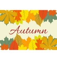 Autumn Leaves Set october colorful vector image vector image