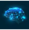 Brain geometric shapes Blue colors vector image