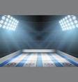 curling ice arena vector image vector image