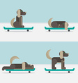 Dog sitting on a skateboard vector image vector image