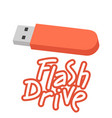 flash drive text flat vector image vector image