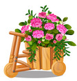 flower pot in shape wooden cart with vector image vector image