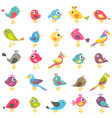 set cute cartoon birds vector image vector image