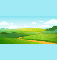 summer fields landscape cartoon countryside vector image