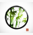 bamboo in black enso zen circle on white vector image vector image