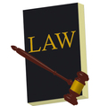 book of law v vector image