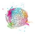 hydrangea hand drawn vector image vector image