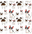 seamless background design with pug dogs vector image