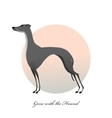 Standing greyhound Stylized image dog vector image vector image